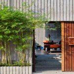 Tài lộc may mắn gõ cửa nếu trồng những loại cây cảnh này trước cửa nhà