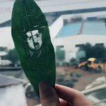 Nghệ thuật từ chiếc lá