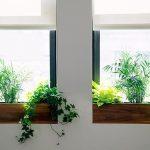 Đọc ngay 5 cách hữu hiệu làm đẹp khung cửa sổ nhà bạn